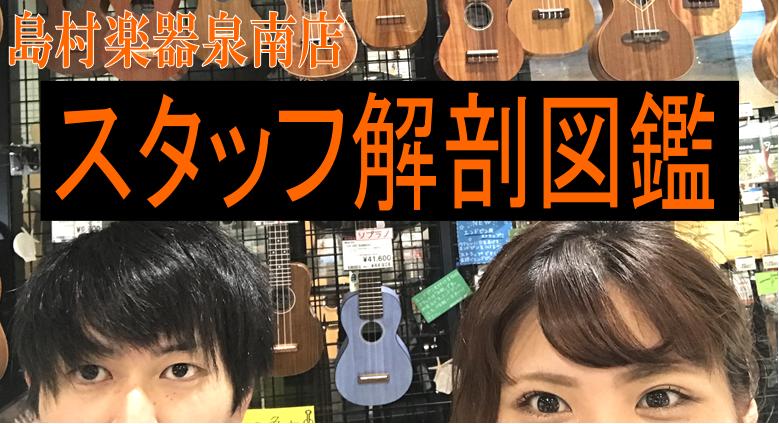f:id:shima_c_sennan:20170627192603p:plain