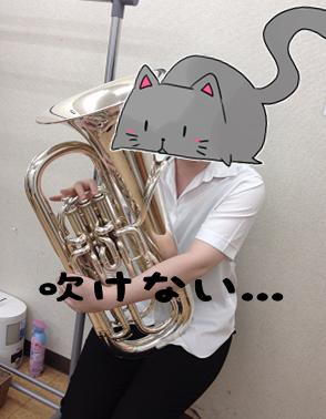 f:id:shima_c_yukari:20170112200007p:plain