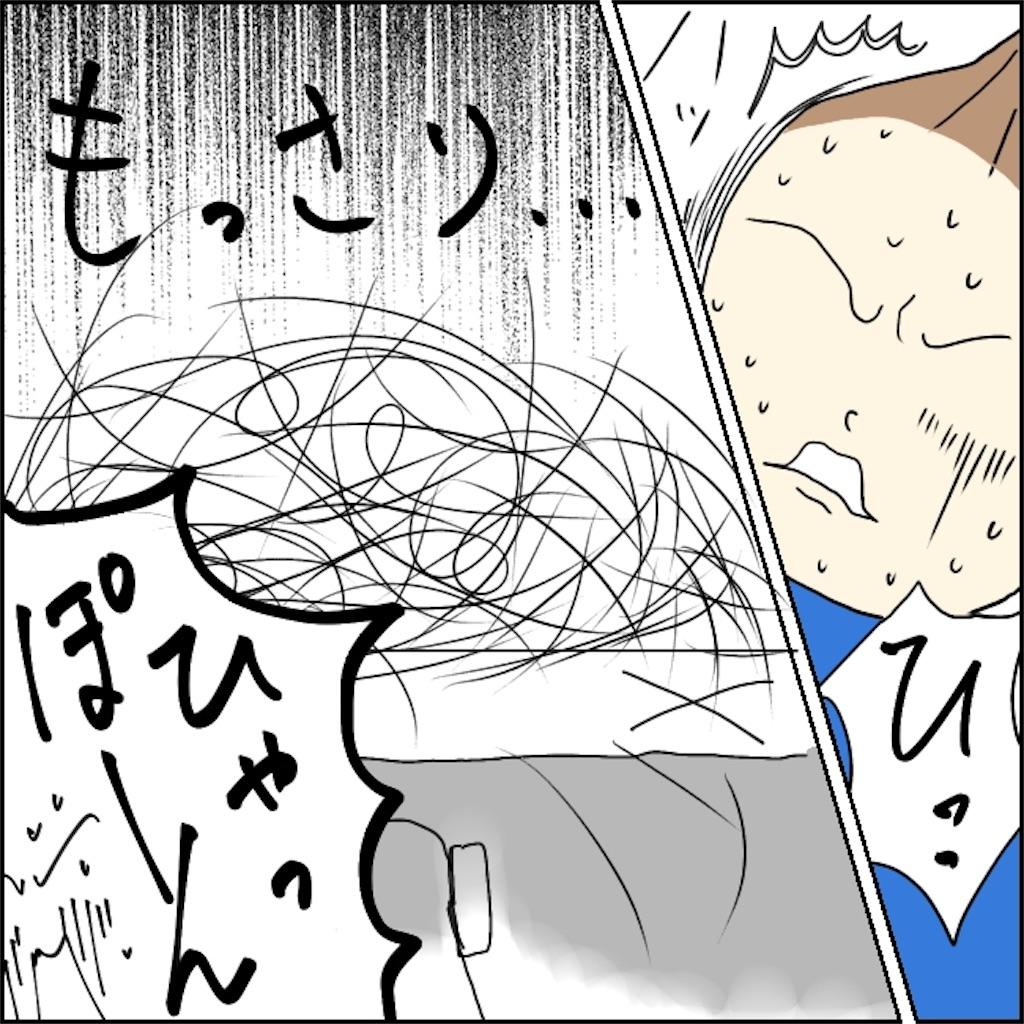 f:id:shimachiyo:20210516001704j:plain
