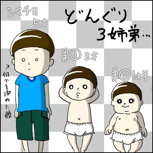 f:id:shimachiyo:20210810102831j:plain