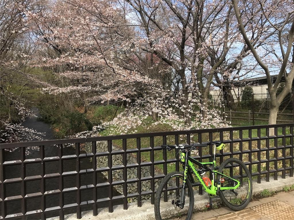 f:id:shimacyu:20180325225319j:image