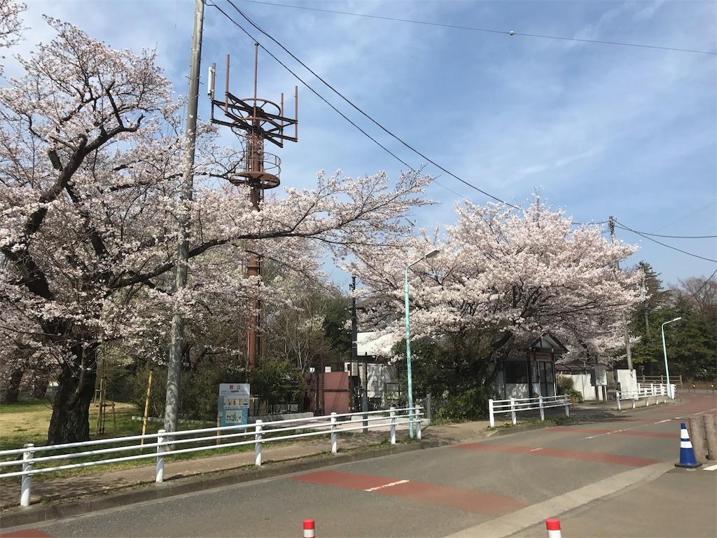 f:id:shimacyu:20180327231650j:image