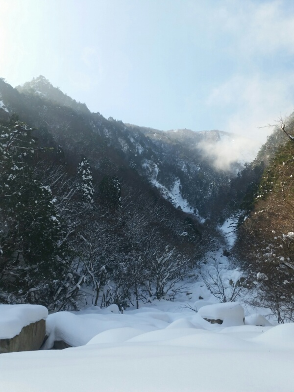 f:id:shimadaguide:20170123124617j:plain