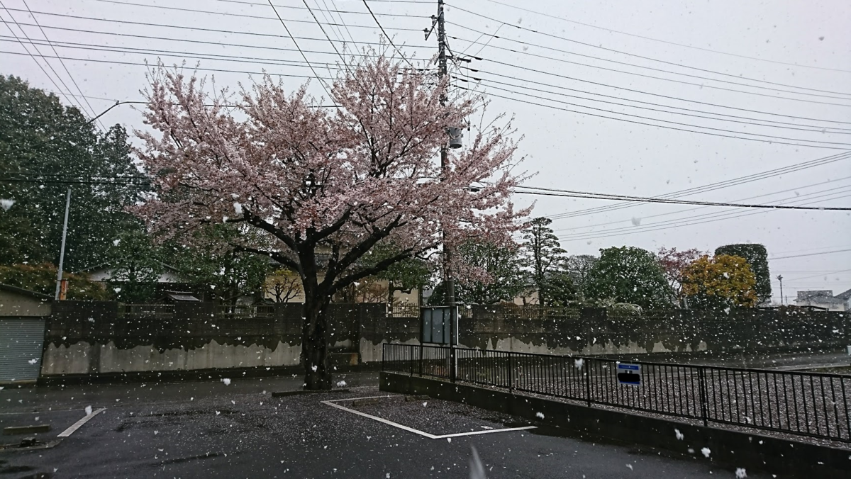 f:id:shimakazu1326:20190410115728p:plain