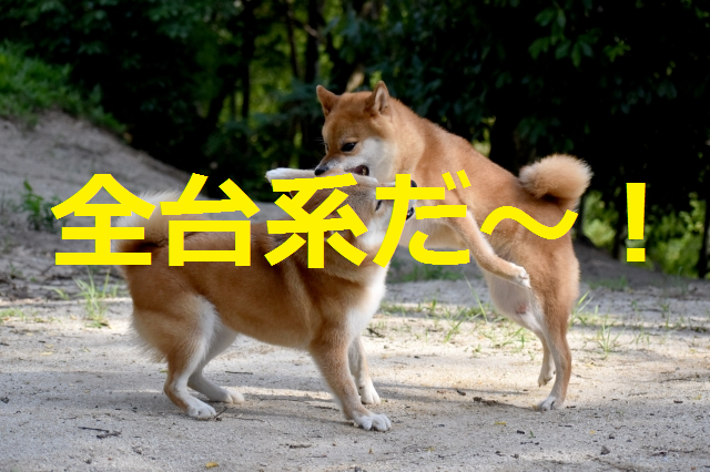 f:id:shimakazu1326:20190808080926p:plain