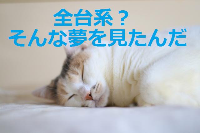 f:id:shimakazu1326:20190809134459p:plain