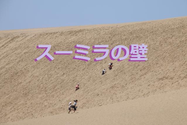 f:id:shimakazu1326:20190820085712p:plain