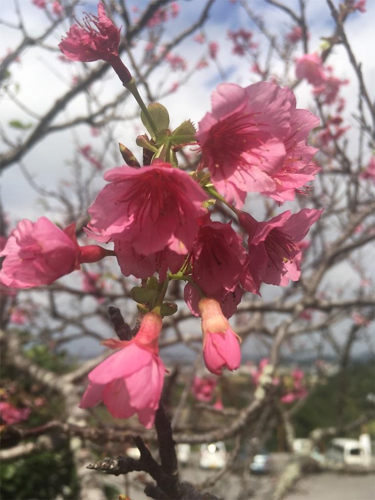 f:id:shimaken9801:20180124231611j:image