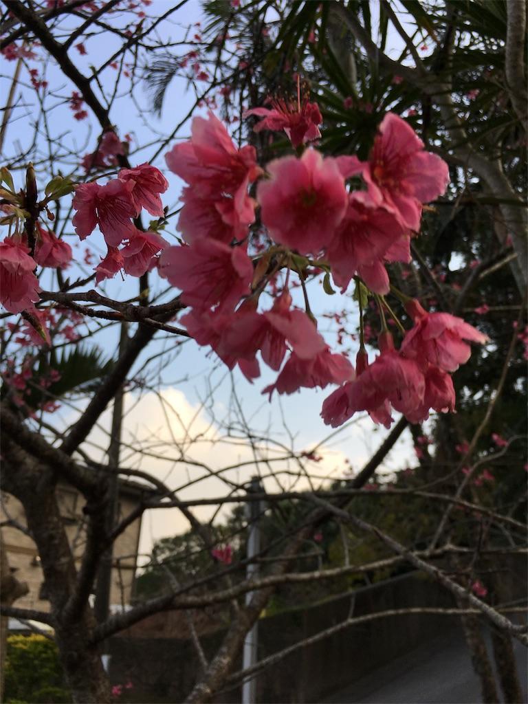 f:id:shimaken9801:20180214095938j:image