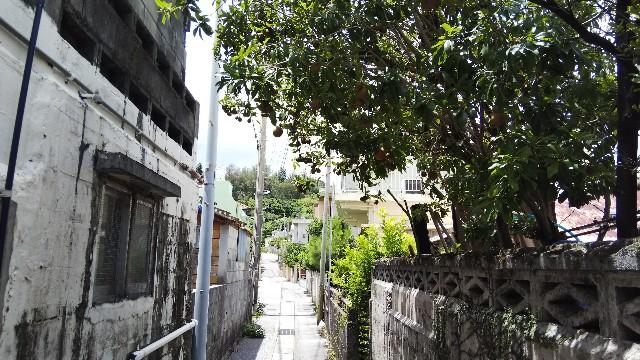 f:id:shimaken9801:20180624062547j:image