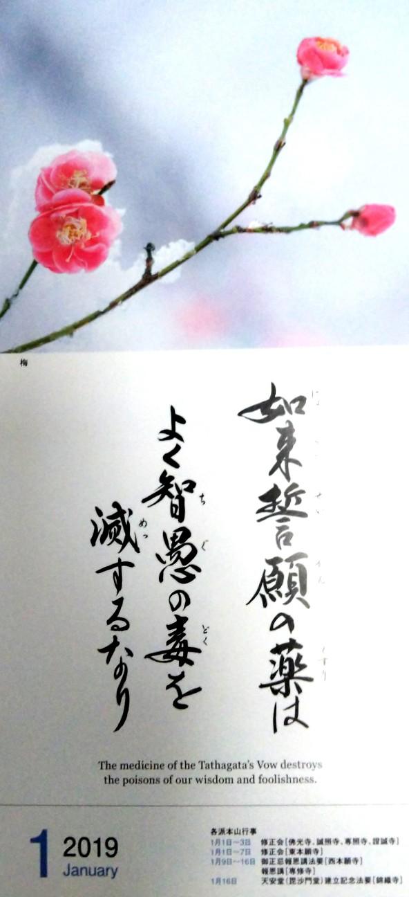 f:id:shimaken9801:20190103125822j:image