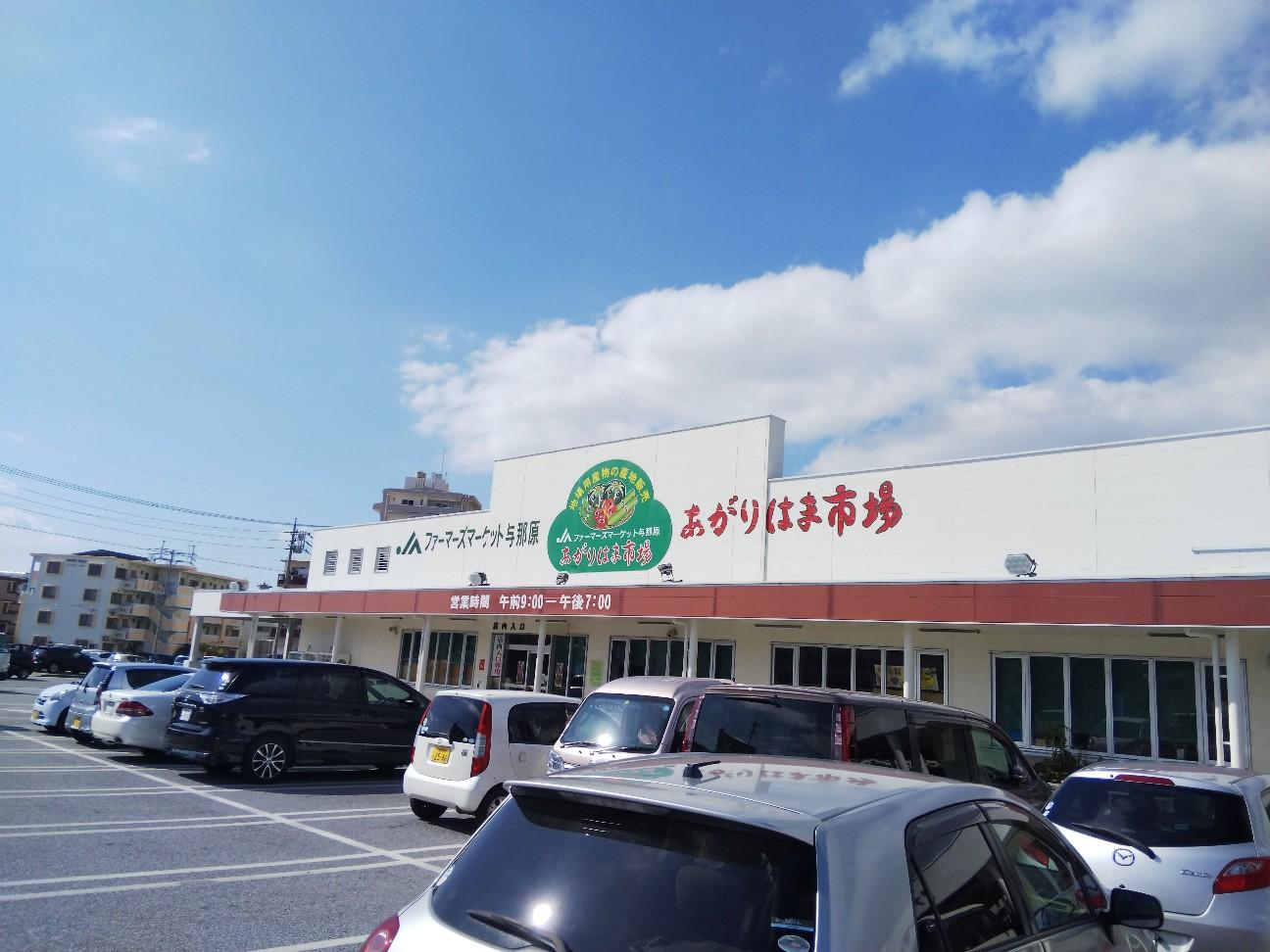 f:id:shimaken9801:20190114132311j:image