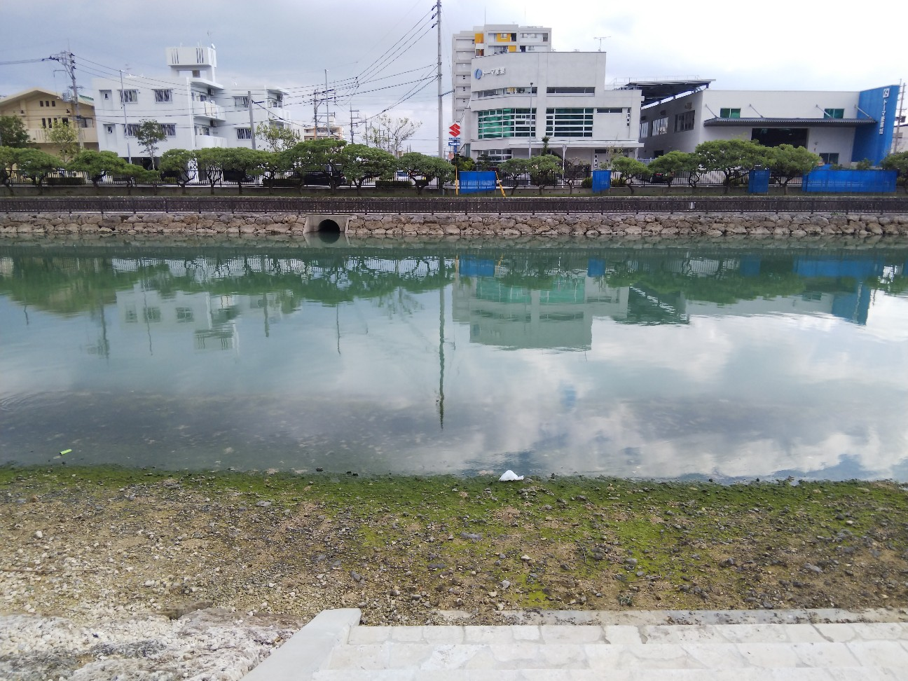 f:id:shimaken9801:20190114132500j:image