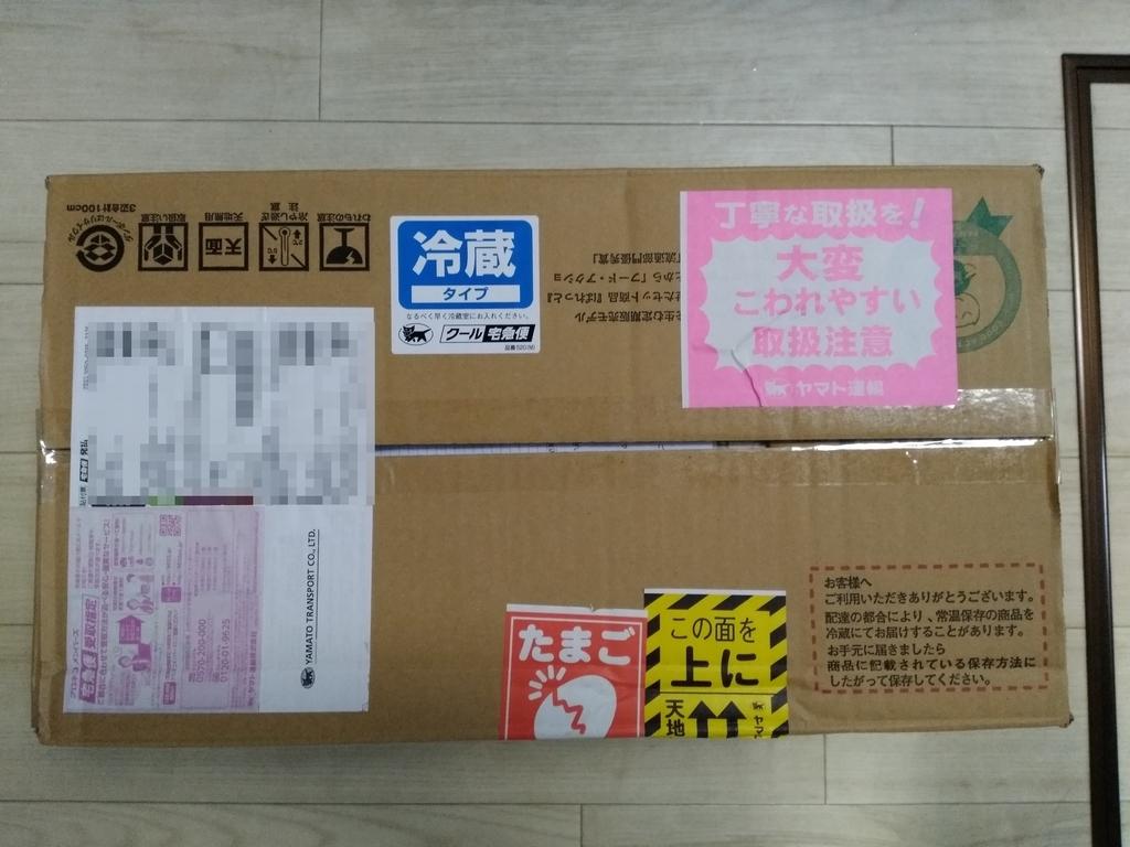 f:id:shimakumasan:20190226000122j:plain