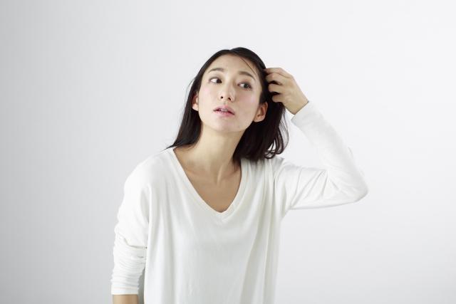 f:id:shimakumasan:20190402225831j:plain