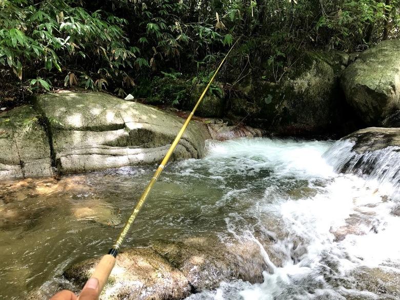 渓流 源流 釣り イワナ ヤマメ ゴギ