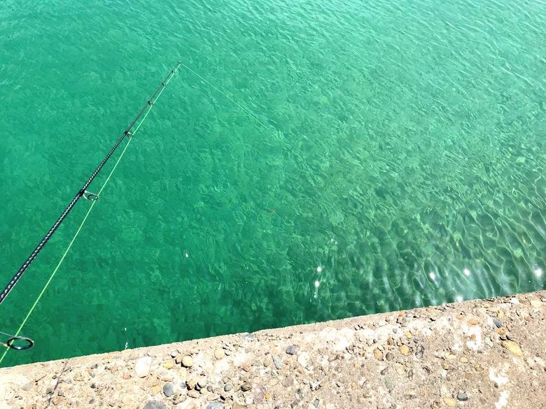 シロギス 釣り ちょい投げ