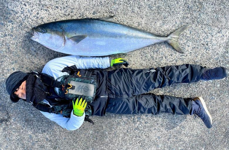 ヒラマサ ロックショア 釣り 泳がせ ショアジギング ルアー 怪魚