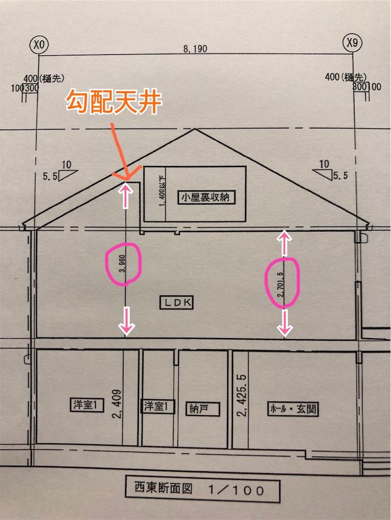 f:id:shimameiblog:20190612192633j:image