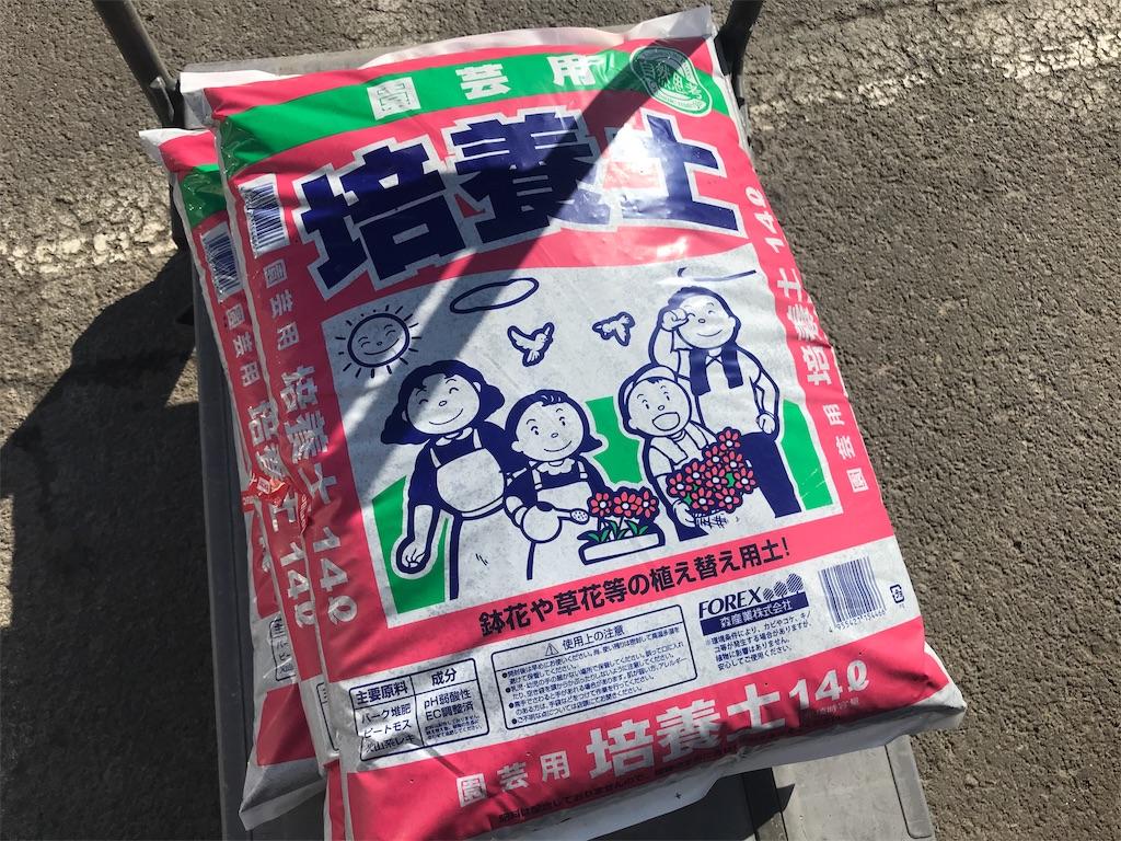 f:id:shimamiho391:20190413164201j:image