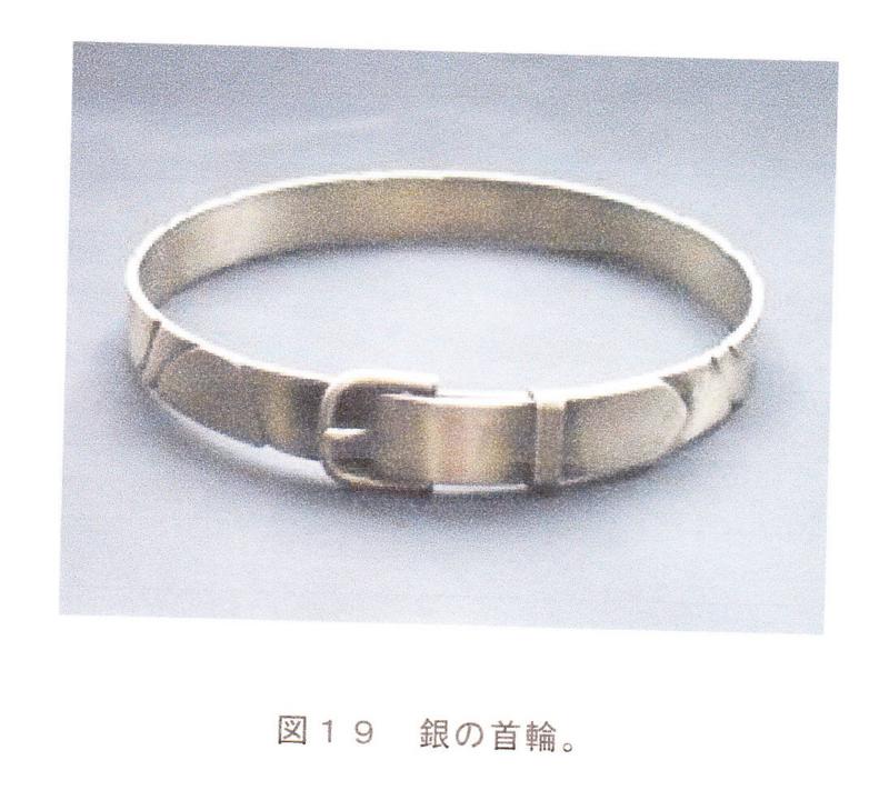 f:id:shimamukwansei:20100215182515j:image:left