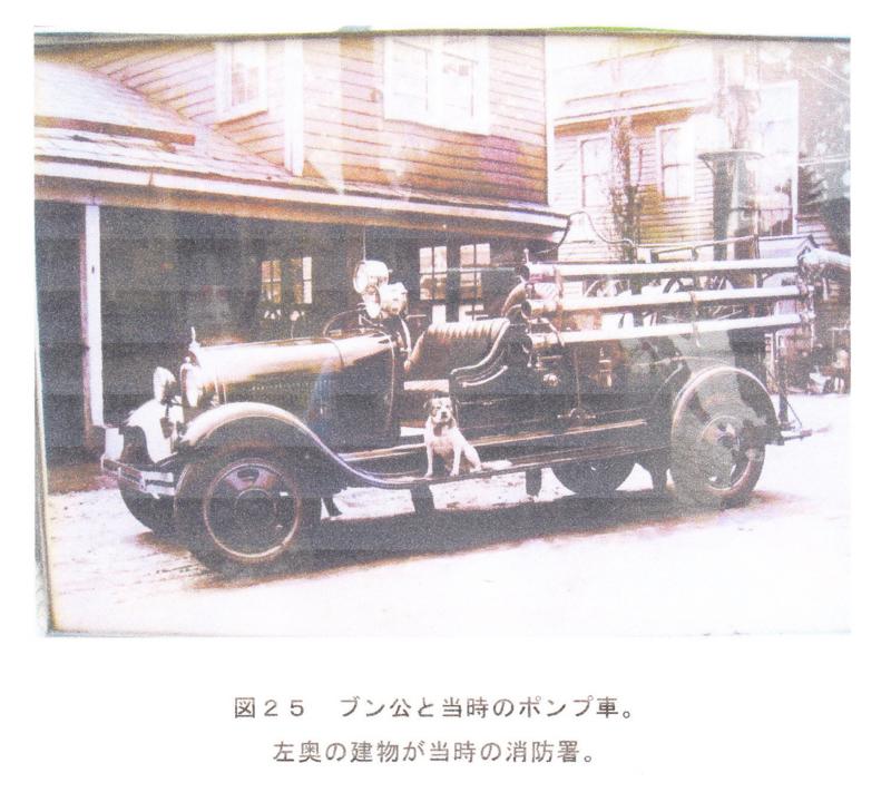 f:id:shimamukwansei:20100215183216j:image:left