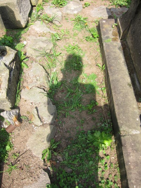 f:id:shimamukwansei:20100916115005j:image