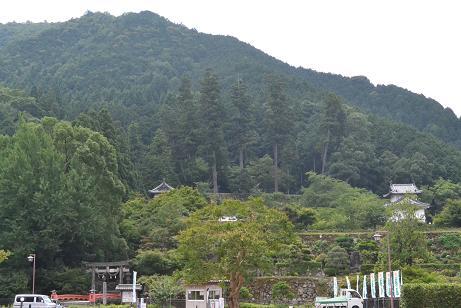 f:id:shimamukwansei:20110725113535j:image