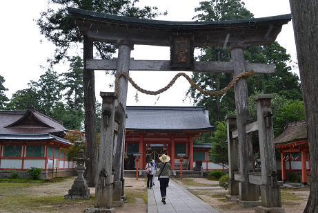 f:id:shimamukwansei:20110725142109j:image