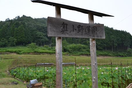 f:id:shimamukwansei:20110725143903j:image