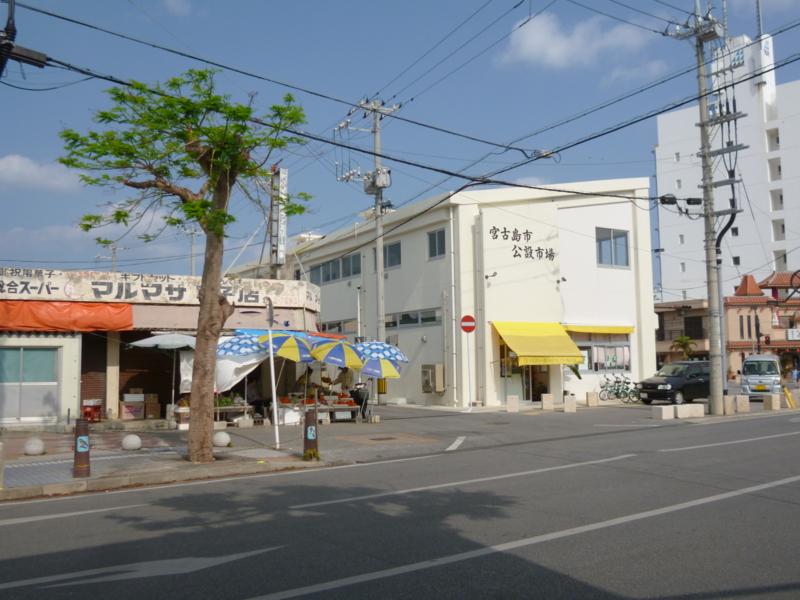 f:id:shimamukwansei:20130131192524j:image