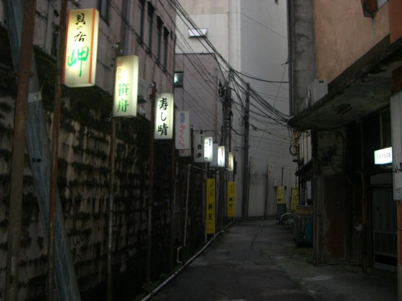 f:id:shimamukwansei:20140122210324j:image:w360