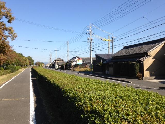 f:id:shimamukwansei:20170129182642p:image:left