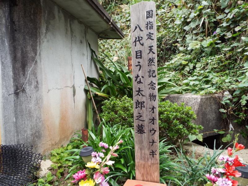 f:id:shimamukwansei:20180110182810j:image