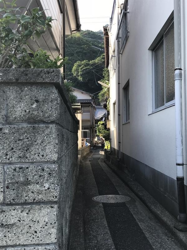 f:id:shimamukwansei:20180903214349j:image:left
