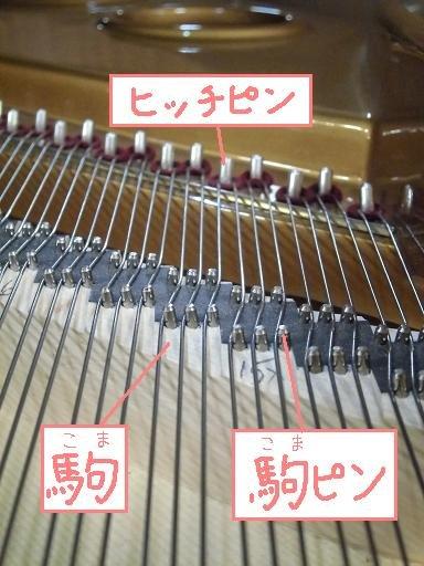 f:id:shimamura-music:20130913140058j:image