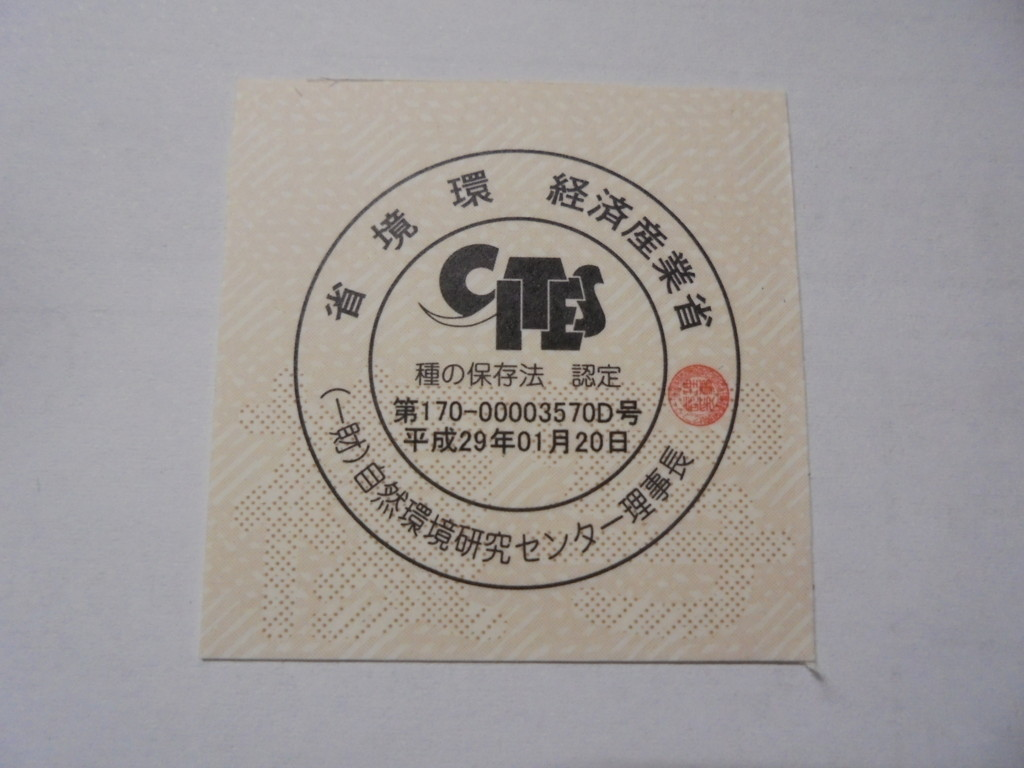 f:id:shimamura-music:20170506173109j:plain