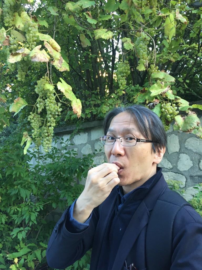 f:id:shimamura-music:20171012115639j:plain:w450