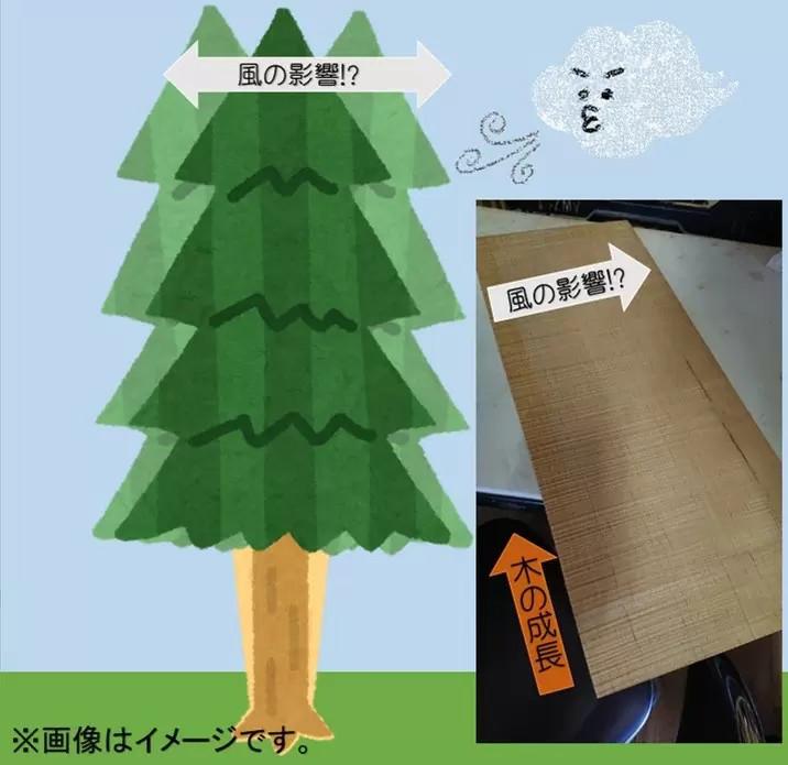 f:id:shimamura-music:20190414142018j:plain