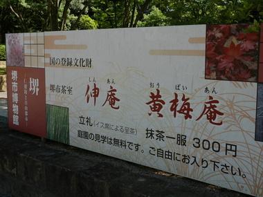 P1000557.JPG