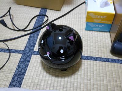 P1050889.JPG
