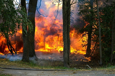 fire-897146_1280.jpg