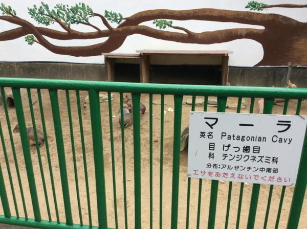 f:id:shimanchu5:20171006125203j:plain