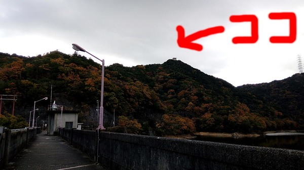f:id:shimanchu5:20191219203810j:plain