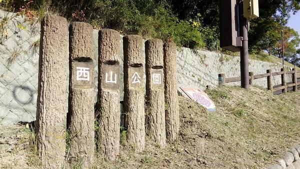 f:id:shimanchu5:20200103212509j:plain