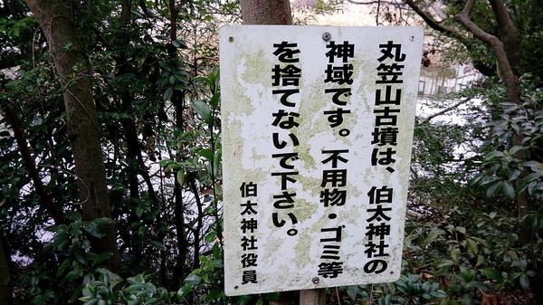 f:id:shimanchu5:20200220165319j:plain