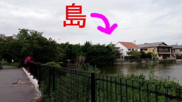 f:id:shimanchu5:20200930202440j:plain