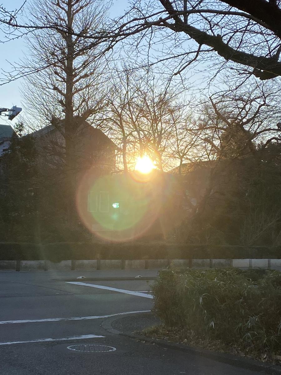 f:id:shimanon_note:20210101203454j:plain
