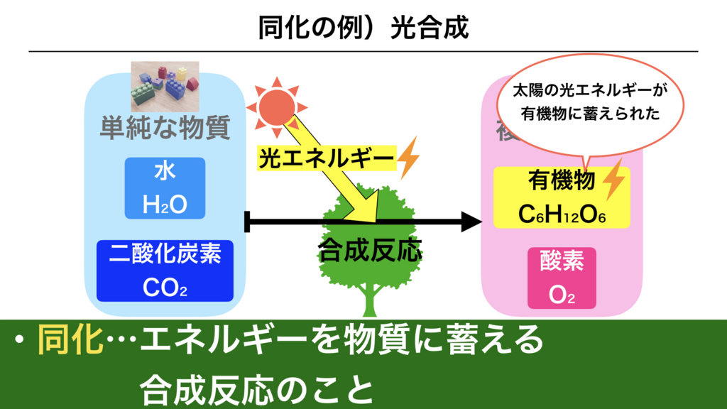 f:id:shimasensei:20180225161129j:plain