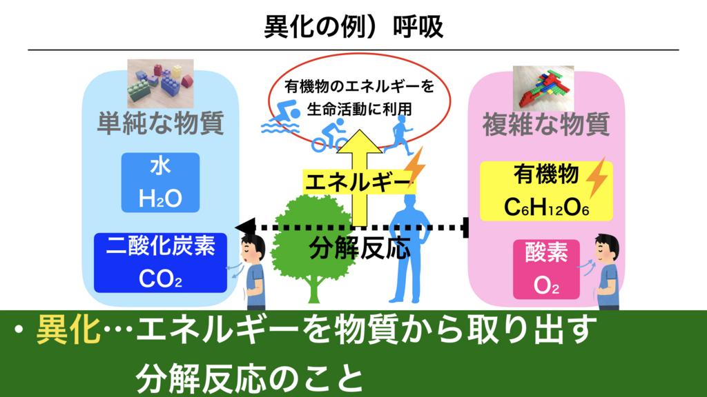f:id:shimasensei:20180225161149j:plain
